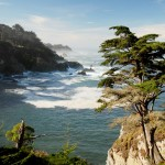 USA-Road-Trip-Big-Sur
